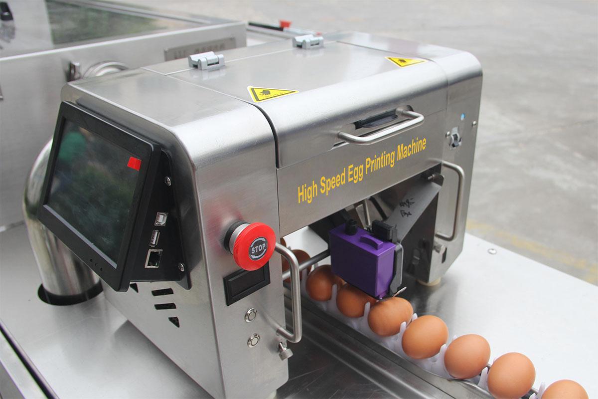 commercial egg printer machine