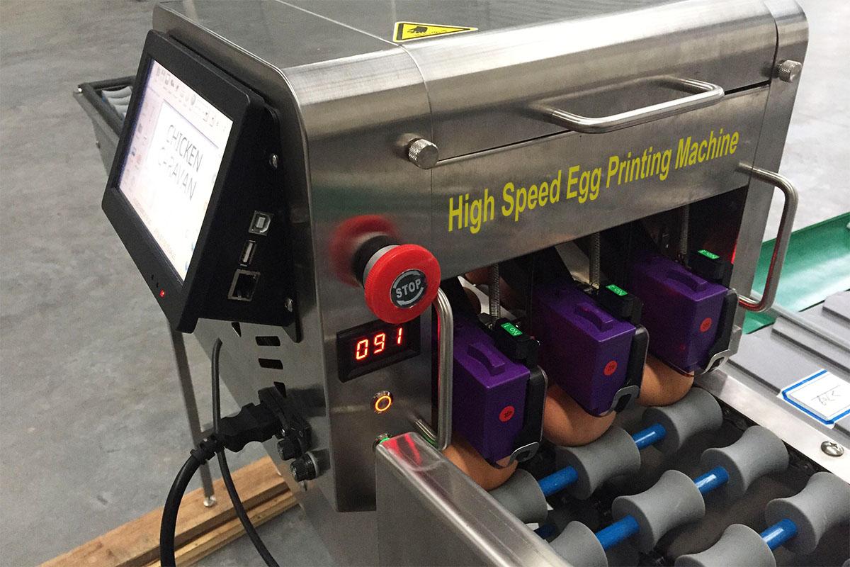 egg printing machine